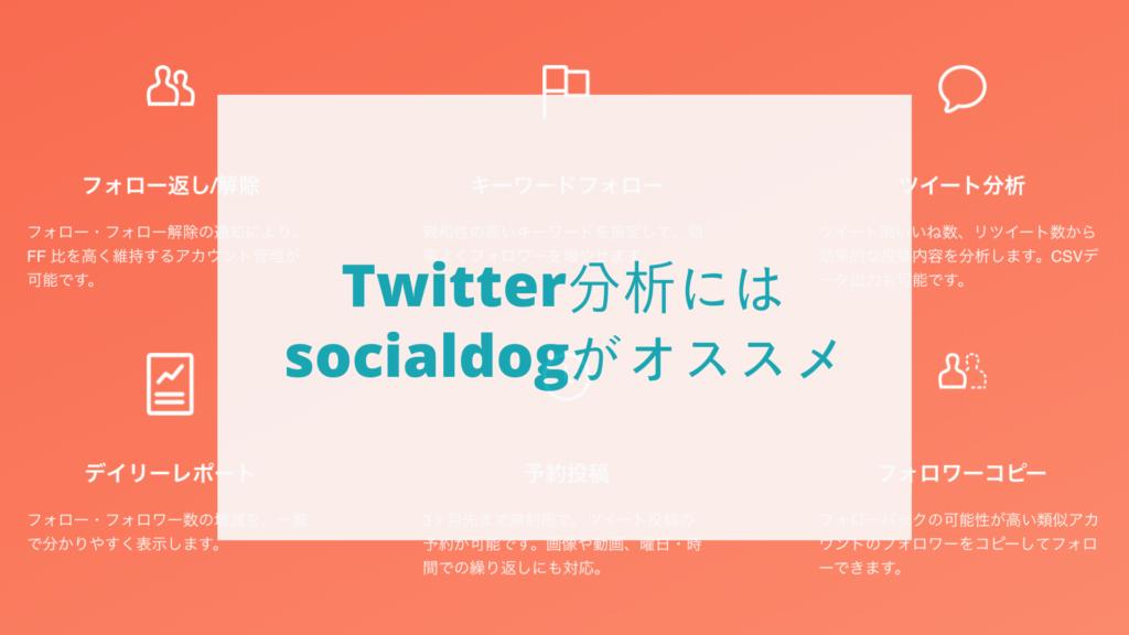 Twitter分析にはsocialdogがオススメ